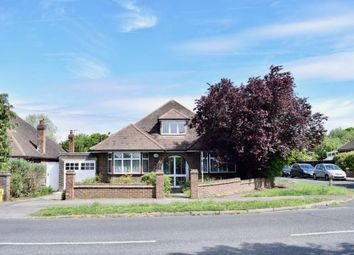 Thumbnail 5 bedroom detached bungalow for sale in Craddocks Avenue, Ashtead