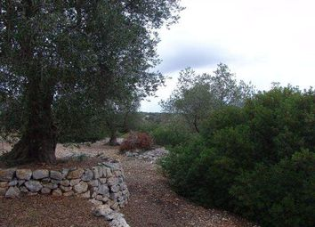 Thumbnail Town house for sale in 72017 Ostuni, Br, Italy