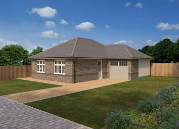 Thumbnail 2 bed detached bungalow for sale in Romansfield, Credtion Road, Okehampton