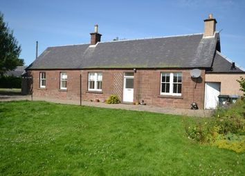Thumbnail 4 bed detached house to rent in Myreriggs Road, Coupar Angus, Blairgowrie