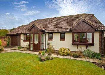 Thumbnail 3 bed bungalow to rent in Woodbury, Exeter