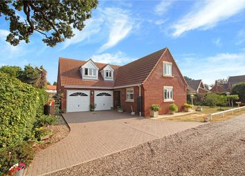 Thumbnail 4 bed detached bungalow for sale in Orchard Close, Blofield Heath, Norwich, Norfolk