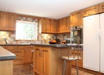 Thumbnail 4 bed property to rent in Station Road, Reedham, Norwich