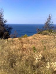 Thumbnail Land for sale in Nea Skioni, Chalkidiki, Gr