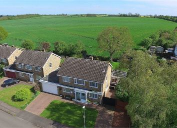 Thumbnail 4 bed detached house for sale in Atterbury Way, Great Houghton, Northampton