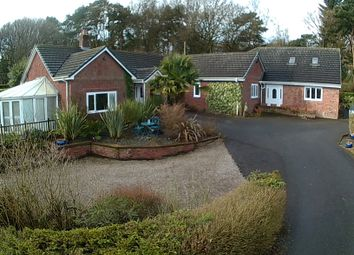 Thumbnail 6 bed detached bungalow to rent in Pinewood Road, Ashley