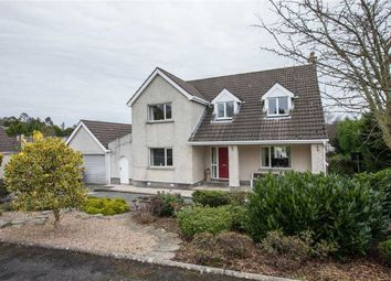 Thumbnail 4 bed detached house for sale in The Beeches, Ballynahinch