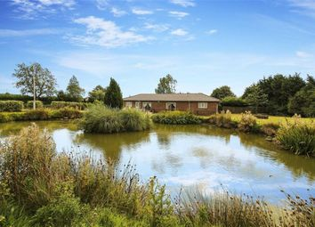 Thumbnail 6 bed detached bungalow for sale in Northside, Chester Le Street, County Durham