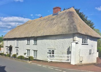 Thumbnail 7 bed property for sale in Dolphin Street, Colyton