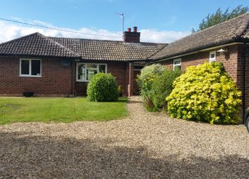 Thumbnail 4 bedroom bungalow for sale in Heath Road, Woolpit