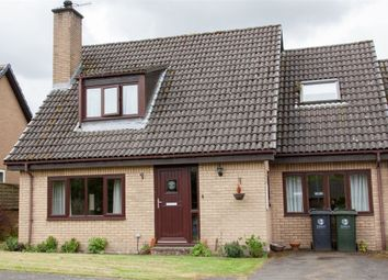 Thumbnail 3 bed semi-detached bungalow for sale in Forstersteads, Allendale, Hexham, Northumberland