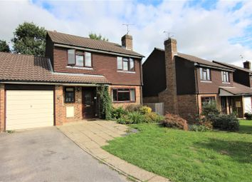 Thumbnail 4 bed detached house to rent in Golden Hill, Burgess Hill