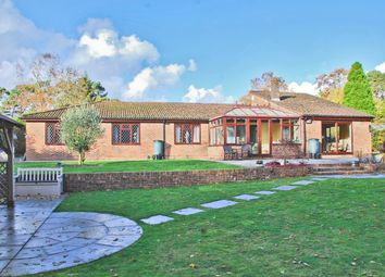 Thumbnail 4 bed detached bungalow for sale in New Forest Drive, Brockenhurst