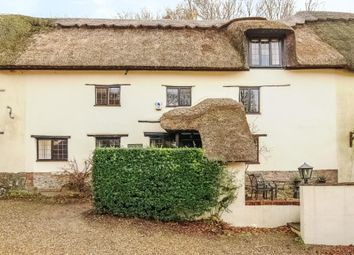 Thumbnail 4 bed terraced house for sale in The Maltings, Milton Abbas, Blandford Forum, Dorset
