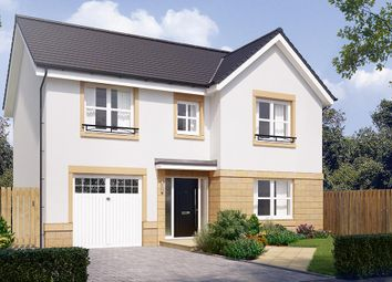 "Thumbnail 4 bed detached house for sale in ""The Norbury"" at Cairneyhill, Dunfermline"