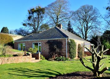 Thumbnail 4 bed detached house for sale in Ash Priors, Taunton, Somerset
