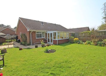 Thumbnail 2 bed semi-detached bungalow for sale in Rodbourne Close, Everton, Lymington