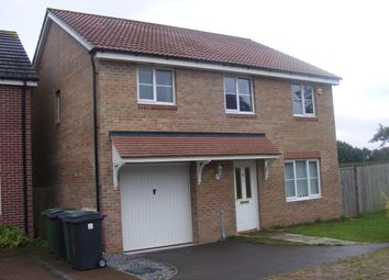 Thumbnail 1 bedroom detached house to rent in Room 2 House Share, St Mellons, Cardiff