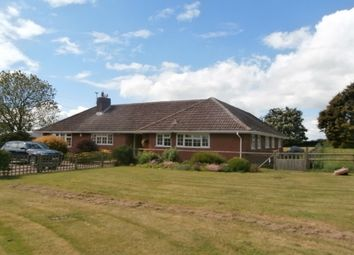 Thumbnail 4 bed detached bungalow to rent in The Toft, Mill Lane, Belton, Loughborough