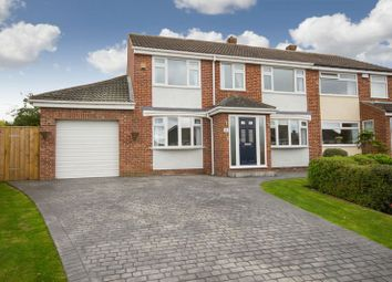 Thumbnail 4 bed semi-detached house for sale in Esher Avenue, Normanby