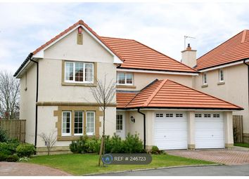 Thumbnail 4 bed detached house to rent in Hammerman Drive, Aberdeen