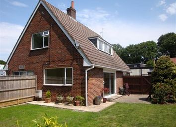 Thumbnail 4 bed property to rent in Ringwood Road, Bransgore, Christchurch