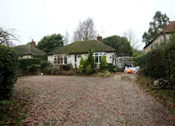 Thumbnail 3 bed detached bungalow for sale in Start Hill, Bishop's Stortford, Essex