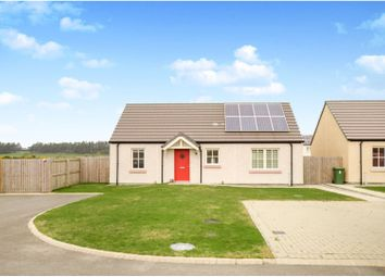 Thumbnail 2 bed detached bungalow for sale in Fraser Avenue, Dornoch