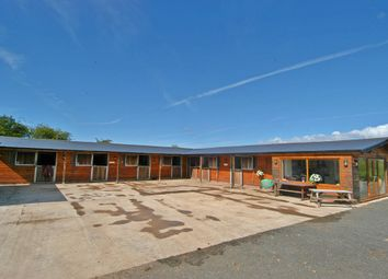 Thumbnail Equestrian property for sale in The Nook, Wirral