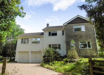 Thumbnail 4 bed detached house for sale in Trew, Breage, Helston, Cornwall