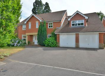 Thumbnail 5 bed detached house to rent in Roundshead Drive, Warfield, Bracknell