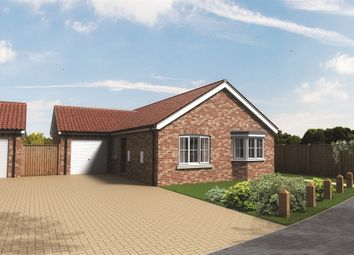 Thumbnail 3 bedroom detached bungalow for sale in Sewell Gardens, Old Catton, Norwich