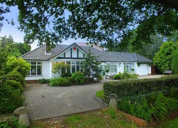 Thumbnail 3 bed bungalow for sale in Green Lane, Barton On Sea, Hampshire