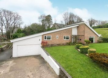 Thumbnail 4 bed bungalow for sale in The Spinney, Old Road, Wrexham