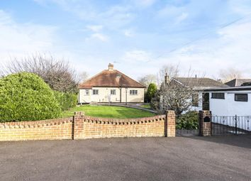 Thumbnail 2 bed detached bungalow to rent in Laleham Road, Staines-Upon-Thames