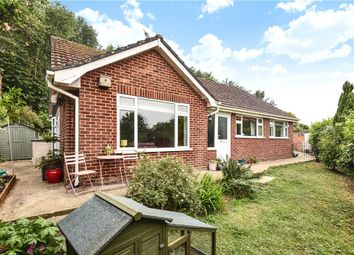 Thumbnail 3 bed detached bungalow for sale in Coneygar Lane, Bridport, Dorset