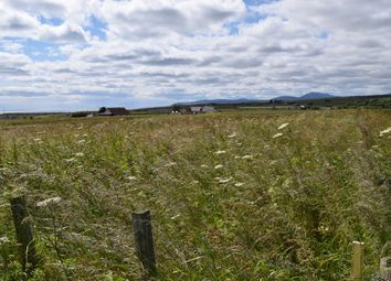 Thumbnail Land for sale in Latheron, Caithness