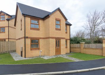 Thumbnail 3 bed detached house for sale in Primrose Road, Barrow-In-Furness
