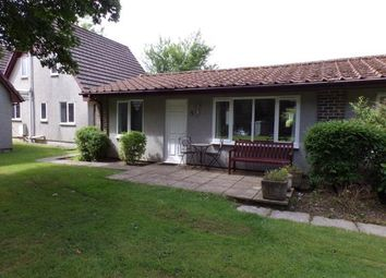 Thumbnail 2 bed bungalow for sale in St Tudy, Cornwall