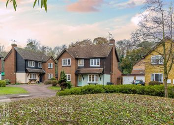 Thumbnail 4 bed detached house for sale in Amberley Green, Ware, Hertfordshire