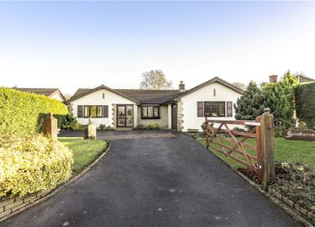 Thumbnail 3 bed detached bungalow for sale in Cooks Lane, Axminster, Devon