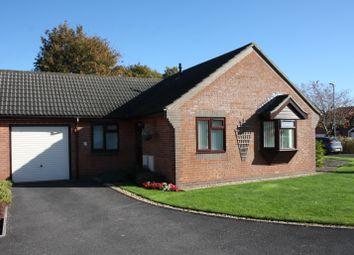 Thumbnail 2 bed detached bungalow for sale in Dashwood Close, Sturminster Newton, Dorset
