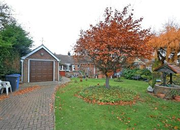 Thumbnail 3 bedroom detached bungalow for sale in Grove Hill, Belstead, Ipswich, Suffolk