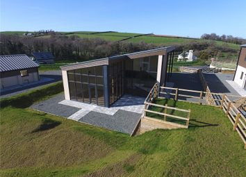 Thumbnail 4 bedroom barn conversion for sale in Warracott Farm Barns, Chillaton, Lifton, Devon