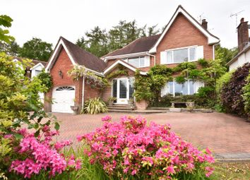 Thumbnail 4 bedroom detached house for sale in Willow Brook Gardens, Mayals, Swansea