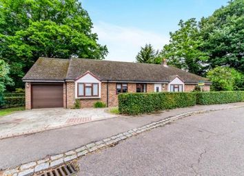 Thumbnail 3 bed bungalow for sale in Porchester Close, Loose, Maidstone, Kent