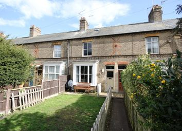 Thumbnail 3 bed terraced house to rent in Burleigh Terrace, St Ives, Cambs
