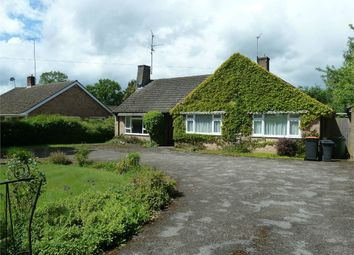 Thumbnail 4 bed detached bungalow to rent in Greenhill, Leighton Buzzard, Bedfordshire