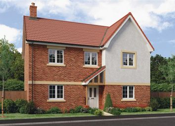 """Thumbnail 4 bedroom detached house for sale in """"Pentrich"""" at Barnards Way, Kibworth Harcourt, Leicester"""
