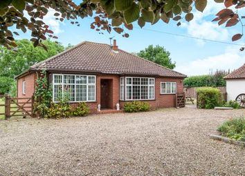 Thumbnail 3 bed bungalow for sale in Hainford, Norwich, Norfolk